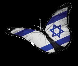 Israel Butterfly